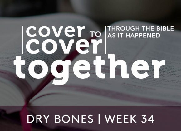 Cover to Cover | Dry Bones